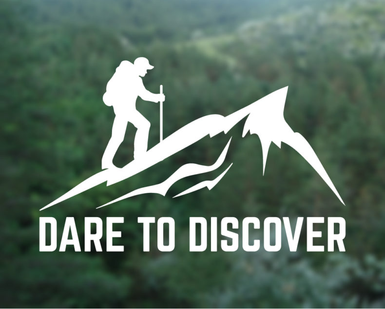 Dare to discover decal